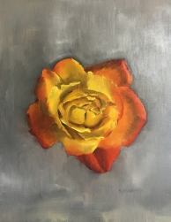 Yellow and Orange Rose on Grey. 12x9. Oil on Linen Panel.