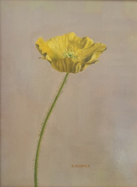 April Poppy. 12x9. Oil on Linen Panel.