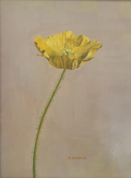April Poppy. 12x9. Oil on Linen Panel.